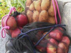 Freebook Obst-und Gemüsebeutel